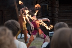 Medeival Fire Show